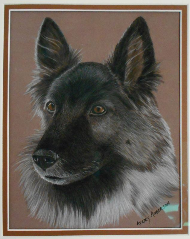 Commission Gallery Avery Anderson Animal Art